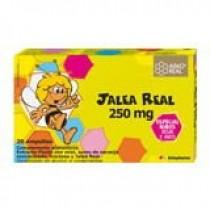 ARKO – ARKOPHARMA Jalea Real Fresca 250 ml