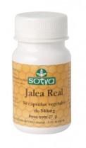 SOTYA Jalea Real 50 cápsulas 540 mg