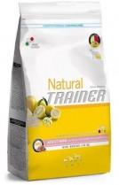 Trainer Natural Adult Mini jamon, arroz y jalea real 2 Kg.